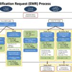 EMR Process Flow